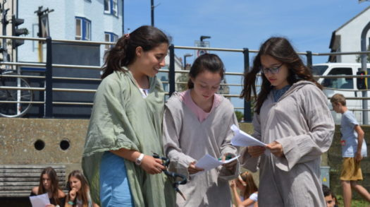 Everything You Wanted to Know About Language Summer Schools