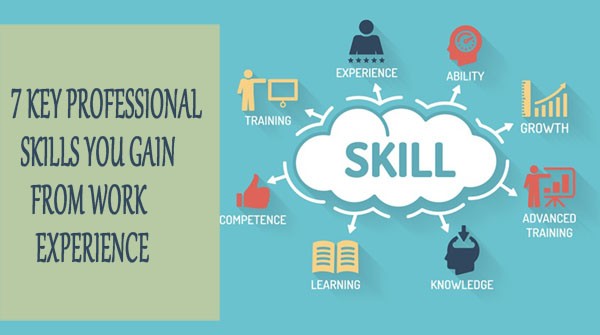 7 key professional skills you gain from work experience